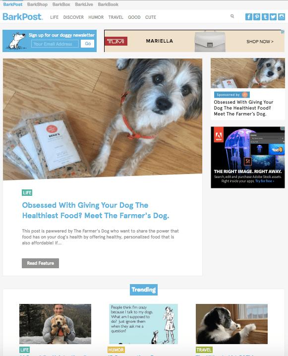 بهترین وبلاگ های دنیا